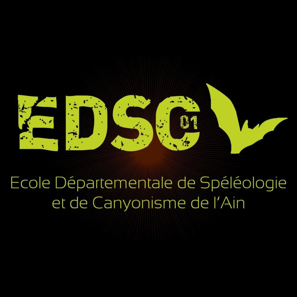 edsclogo01fb