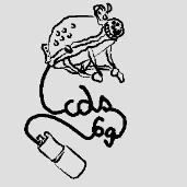 logo_cds69_small